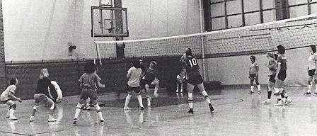 volleyball-action-1976-1