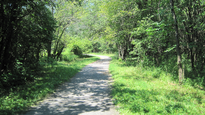 ccc-nature-trail-7