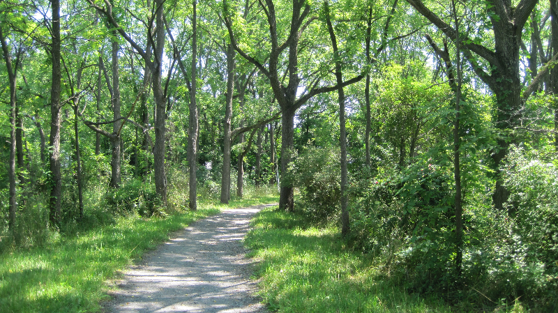 ccc-nature-trail-8