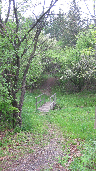 nature-trail-2009-1